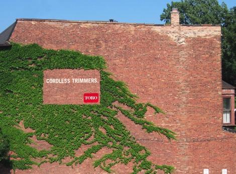 Toro - Ivy wall